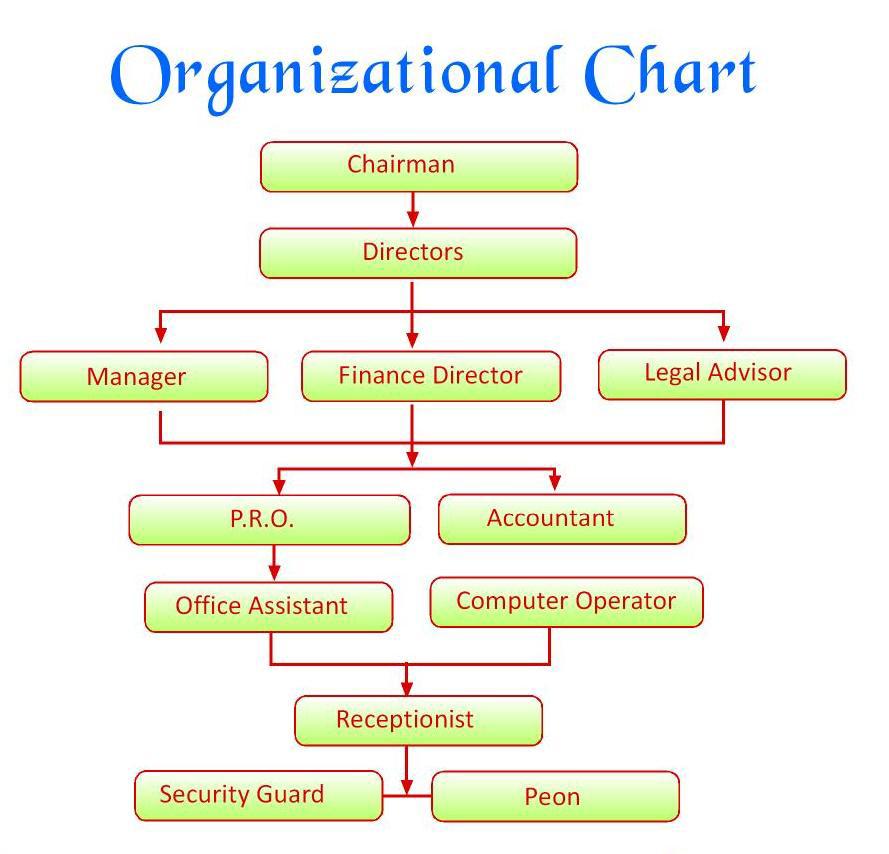 organization-chart-rk